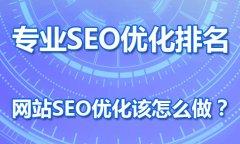 专业SEO优化浅谈:网站seo如何优化效果好?