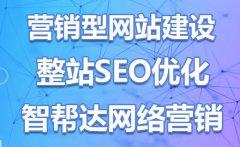 专业SEO营销浅谈,网站SEO优化排名的基本功